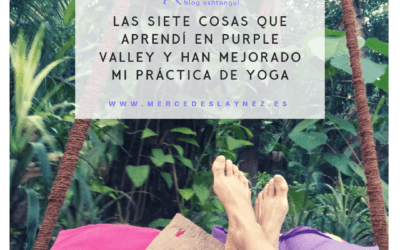 Las 7 cosas que aprendí en Purple Valley y han mejorado mi práctica de ashtanga yoga